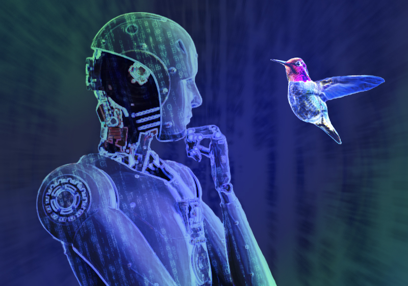 Roboter mit Vogel